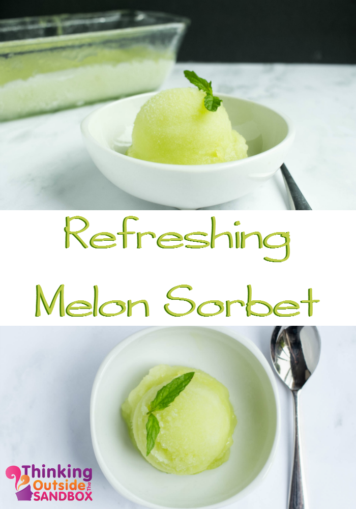 Refreshing Melon Sorbet