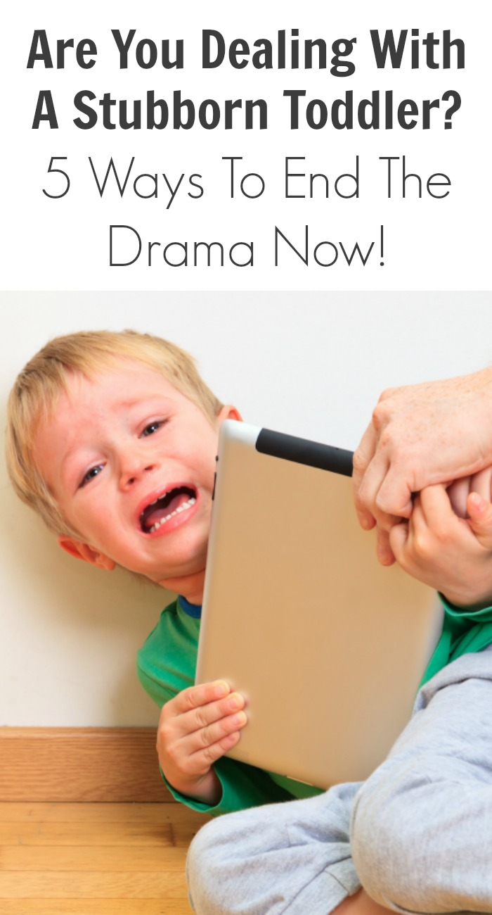 Are You Dealing With A Stubborn Toddler? 5 Ways To End The Drama Now!