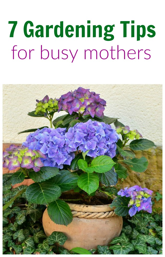 7 Gardening Tips for Busy Mothers